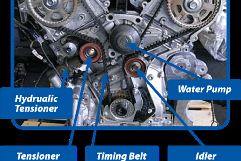What does a timing belt do?